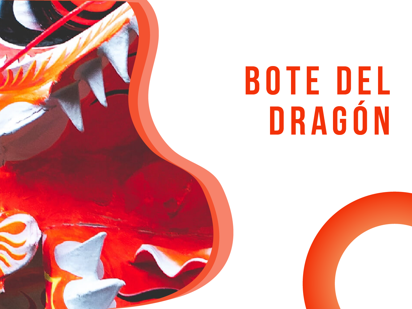 Bote del Dragón Banner