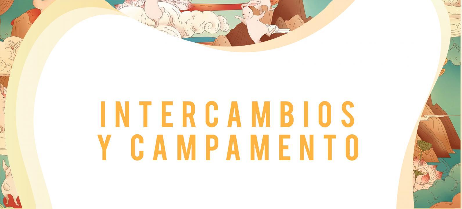 Banner Intercambios y Campamento Desktop