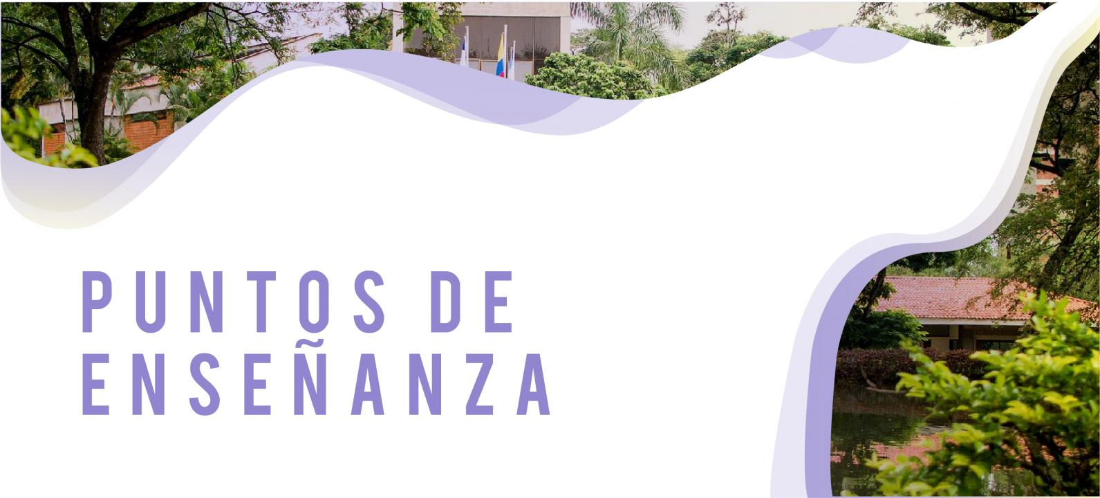 Banner Puntos de Enseñanza